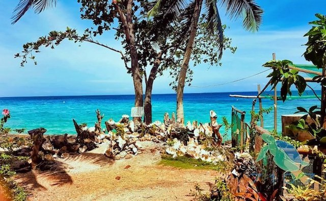 Giant Clam Sanctuary Camiguin