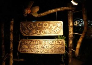 Iwahig River Tour