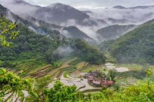 Cordillera Berge, Reisterassen
