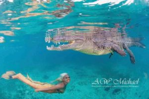 Frau taucht unter Krokodil